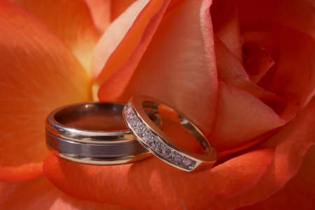 Closeup of silver wedding rings on red rose DOF focus on diamonds photo