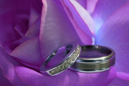 Clseup of wedding rings on purple rose DOF focus on diamonds Stock Photo