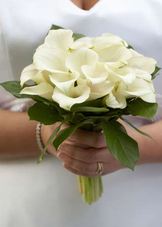 Hands of bride holding wedding bouquet of white calla lilies