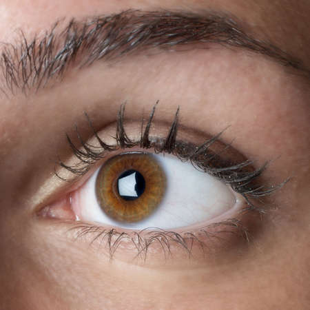 Closeup eye of female Caucasian young woman Stock Photo