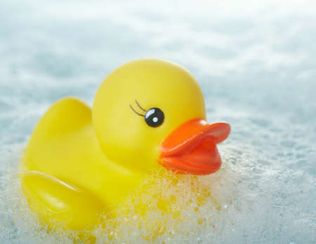 squeaky clean: Yellow rubber ducky floating in soapy water