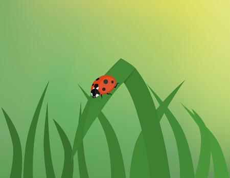 grass blade: Ladybug on grass blade with gradient mesh background. Illustration