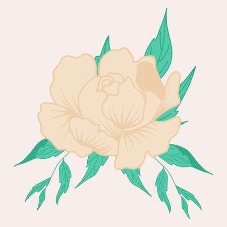 vector illustration with beautiful cream peony Ilustracja