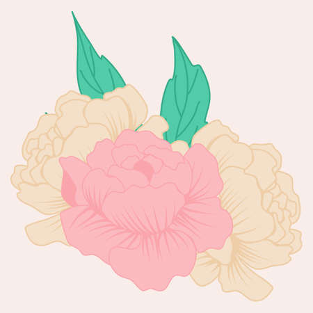 vector illustration with cream and pink peonies