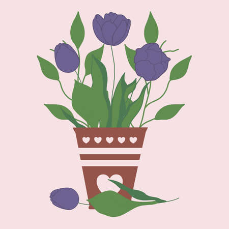 purple tulips in a brown pot, vector illustration