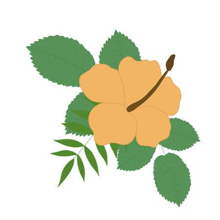 yellow vector tropical flower bouquet