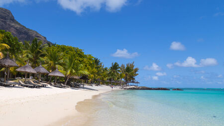 cielo y mar: vista de la playa del mar con agua clara y arena blanca y palmeras