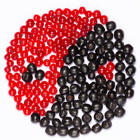 yin yang symbol of red and black berries on a white background photo
