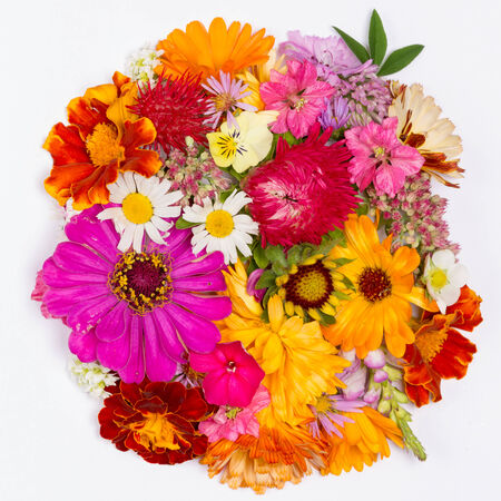 beautiful showy bright bouquet of different colors on a white background photo
