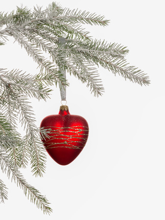 bright red glass heart shaped balloon hanging on a Christmas tree covered with snow on white background photo