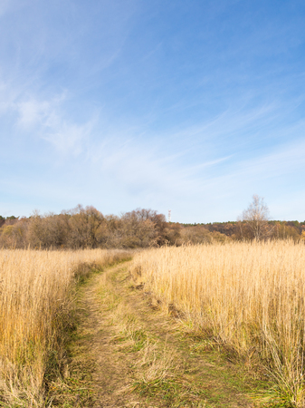 clear day in winter time: dirt road in the late autumn and the blue sky with cirrus clouds Stock Photo