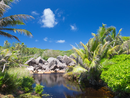 rainforest with large granite rocks and clear river in the Seychelles