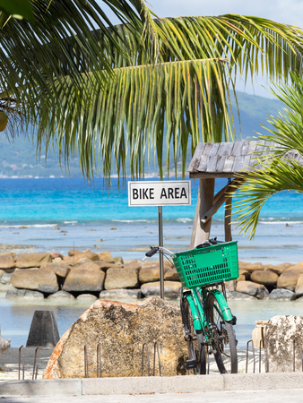 bicycle parking and green bike on it against the sea and palm trees photo