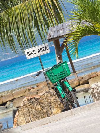 cycling area against the bright turquoise sea and green palm trees photo