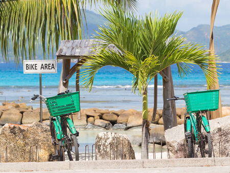 bicycle parking and two green bicycle on her background of sea and palm trees photo
