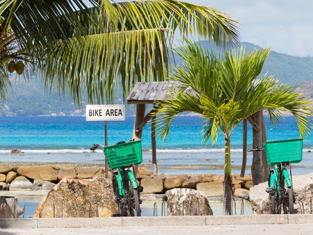bicycle parking and two green bicycle on it against the sea and coconut palms photo
