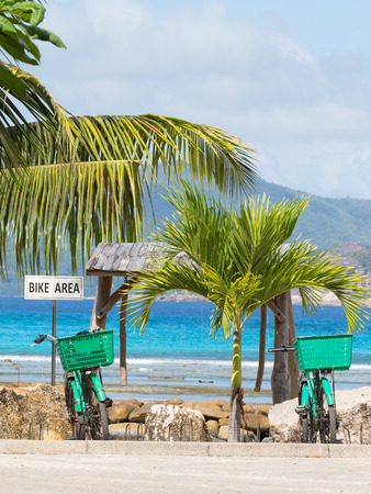 bicycle parking and two green bicycle on it against the sea and coconut trees, vertical photo