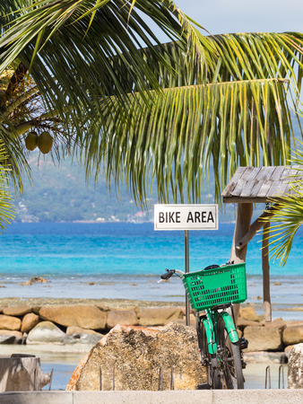 bicycle parking and green bike on it against the sea and coconut palms photo