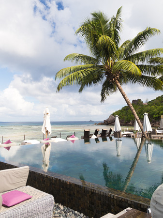 loungers: swimming pool and sun loungers with parasols in the open air overlooking the beautiful sea and palm trees