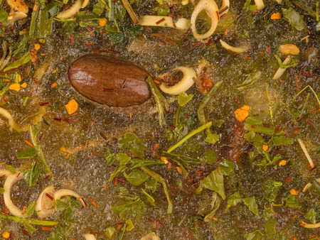 abstraction of a lot of different bright tasty spices and nutmeg in water photo