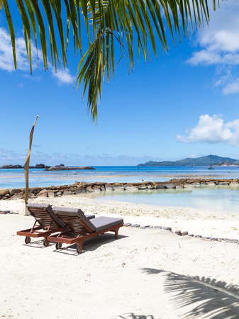 two loungers on the beautiful picturesque beach with white sand and palm leaf photo