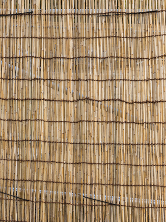 ethnic style: partition of dried bamboo in ethnic style