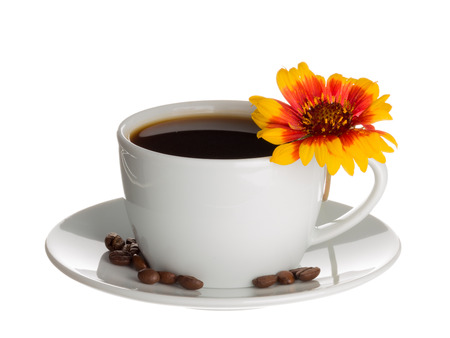 stimulate: Coffee in white cup and saucer in which the coffee beans are brown and bright flower Gaillardia isolated on white background