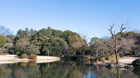 good weather: Tokyo - 4 February 2015: Beautiful park with a pond and a bridge in Tokyo in the winter in good weather February 4, Tokyo, Japan