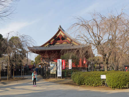 good weather: Tokyo - Feb. 4, 2015: People relax in Ueno Park in the winter in good weather February 4, Tokyo, Japa