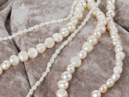 freshwater pearl: beautiful white pearl beads on velvet fabric with pleats