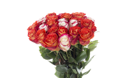 bright bouquet of fresh beautiful red and white roses on a white isolated background Stock Photo