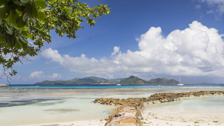Beautiful seascape with white yachts and green mountains on the horizon and branches with green leaves, Seychelles