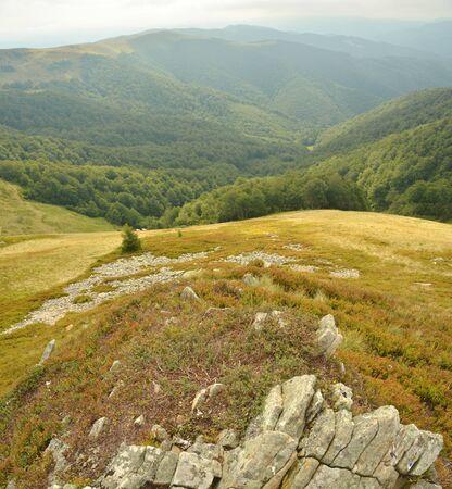wide panorama of the Carpathian mountains