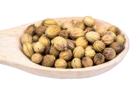 coriander seeds: Coriander seeds in a wooden spoon closeup Stock Photo