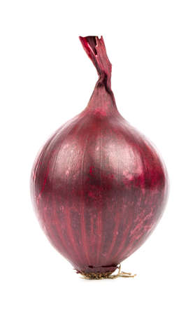 onion peel: Purple onion with the root in the peel on a white background