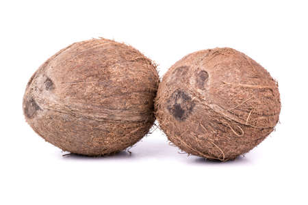 villi: Two ripe and full with coconut villi on a white background