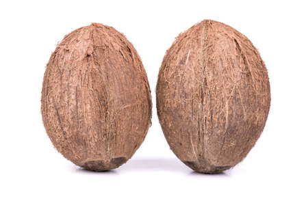 villi: Two ripe and full coconut  with villi on a white background