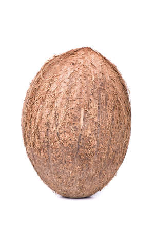 villi: One ripe fruit coconut with villi standing on a white background