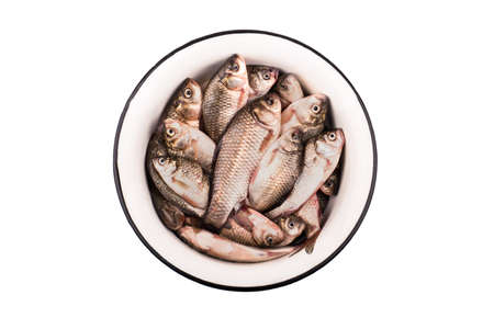 crucian: Catch of fishing. Full bowl of crucian carp isolated on white background