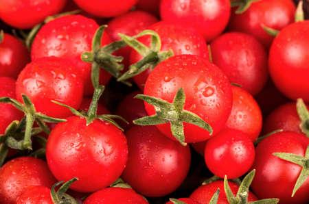 tomate cherry: Pequeños tomates cherry rojos frescos con gotas de primer plano