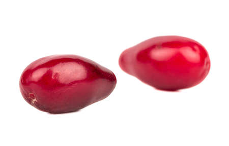 Two fresh cornelian cherry isolated on a white background