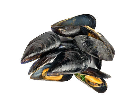 Heap of tasty cooked mussels on a white background, top view