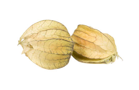 Two of fresh fruit physalis on a white background