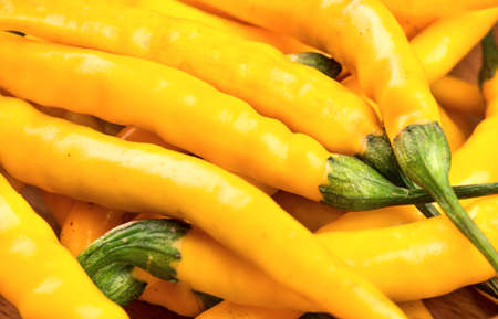 capsaicin: Fresh and tasty yellow chili pepper closeup