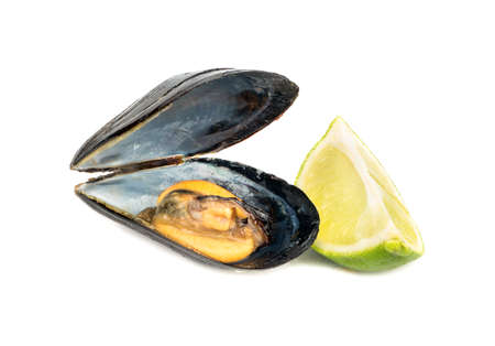 Open mussels cooked with a slice of lime on white background