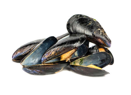 Heap of tasty cooked mussels on a white background