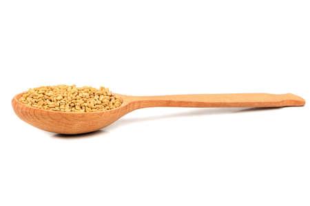 Nasiona kozieradki w drewnianej łyżce na białym tle