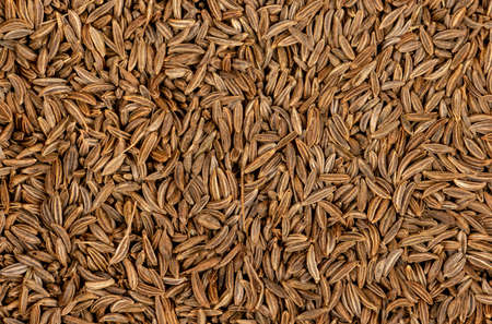 Background from scattered dry spices cumin close up Stock Photo