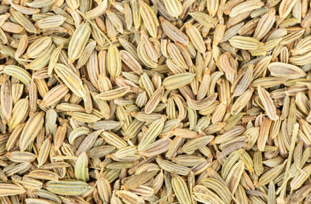 Background from scattered dry spices fennel close up