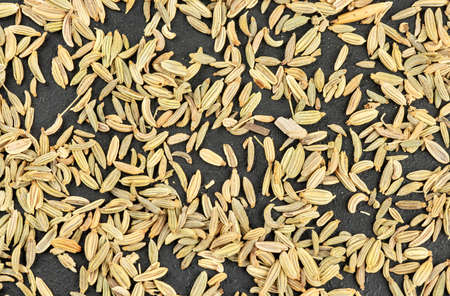 Background of scattered spice dry fennel top view